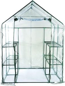 Bloom 63537 Large Walk-in Greenhouse