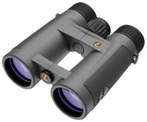 Leupold BX-4 Pro Guide HD 2