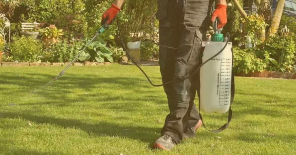 Portable Weed Sprayers